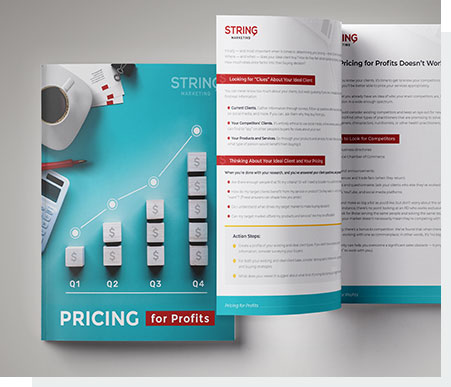 """Pricing for Profits"" ebook preview"