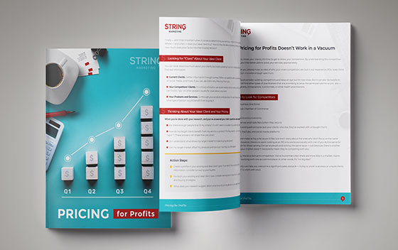 """""""Pricing for Profits"""" ebook preview"""